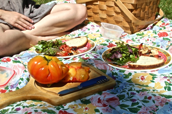 Tomato Picnic Lunch
