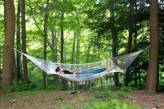 A Nap in a Hammock